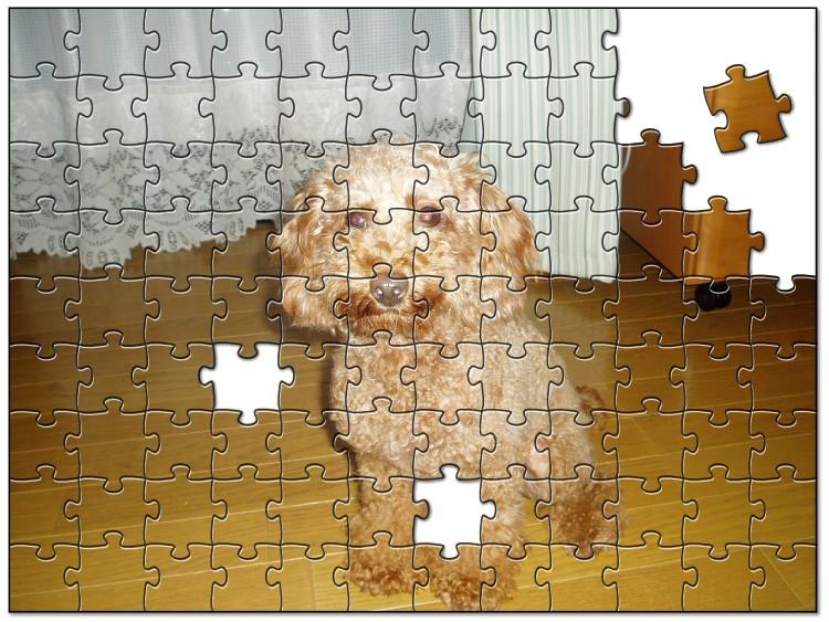 Jigsaw9623104